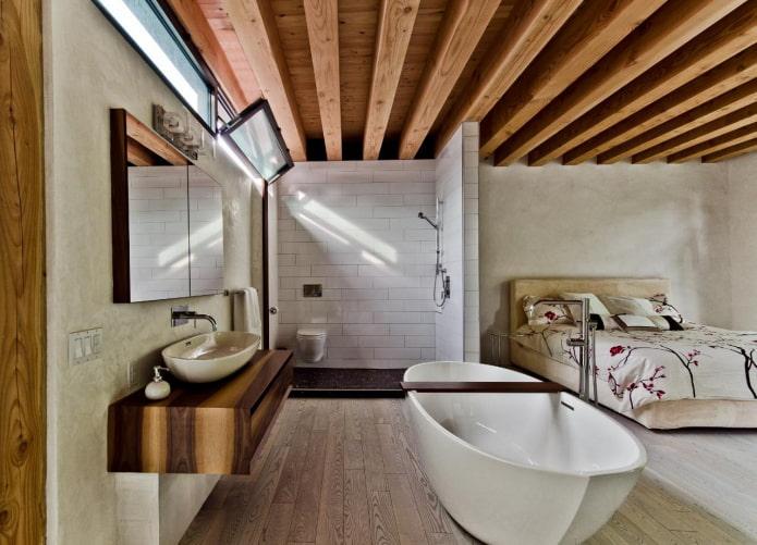 Salle de bain avec douche dans la chambre